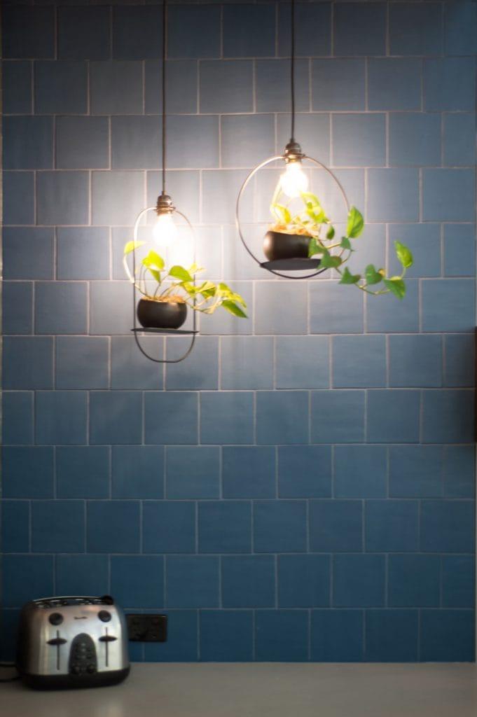 Lights with plants beneath illuminate the blue kitchen splash back