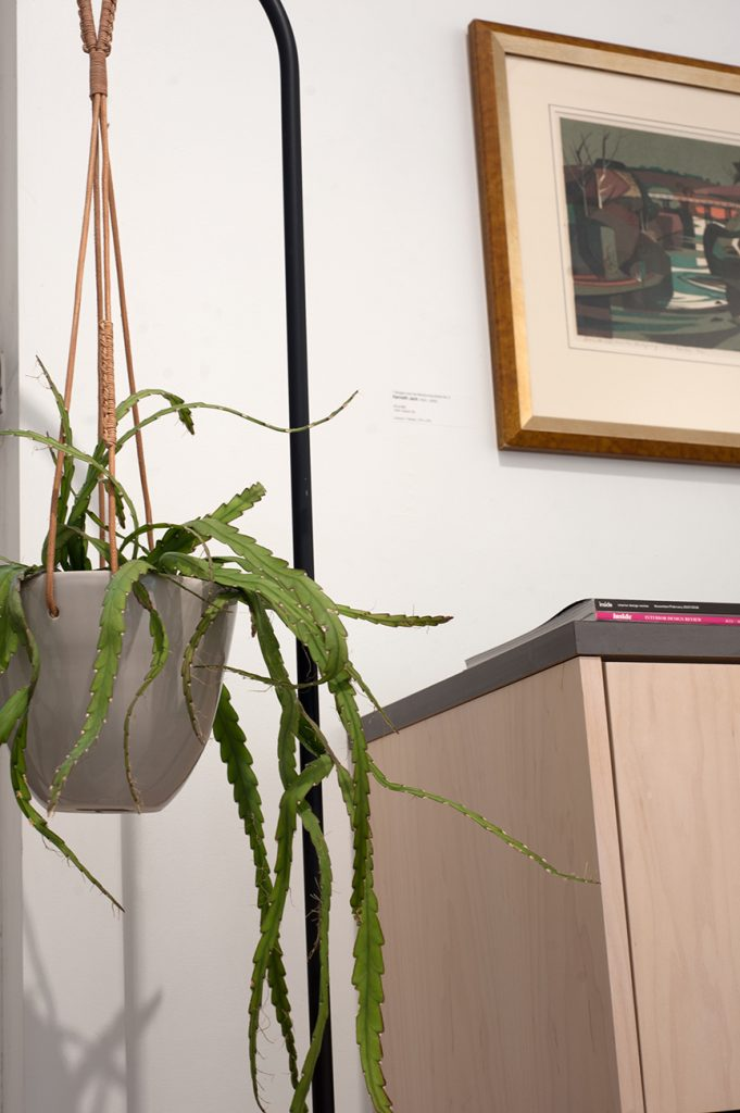 Hanging plant in front of picture